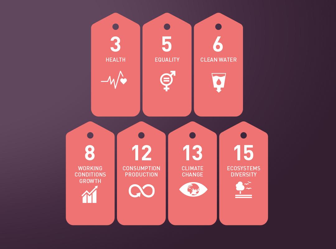 sustainable priorities, infographic